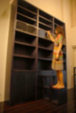 interior_bookshelf_50.jpg