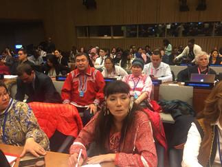 Александр Новьюхов: Прочные партнёрские отношения общественных организаций коренных народов с бизнес