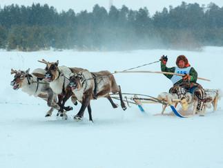 Александр Новьюхов рассказал о подготовке к VI Конкурсу профессионального мастерства среди оленеводо