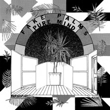 """Fake Palms """"Pure Mind"""" (Buzz Records) - Mixing"""