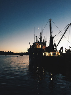 Lunenburg harbour