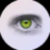 Visão AncePlast