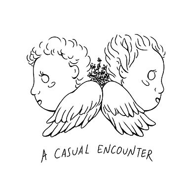 A Casual Encounter cover image