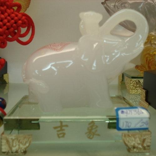 Weiß Elefant