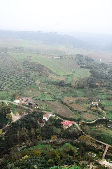 Spanish Farms