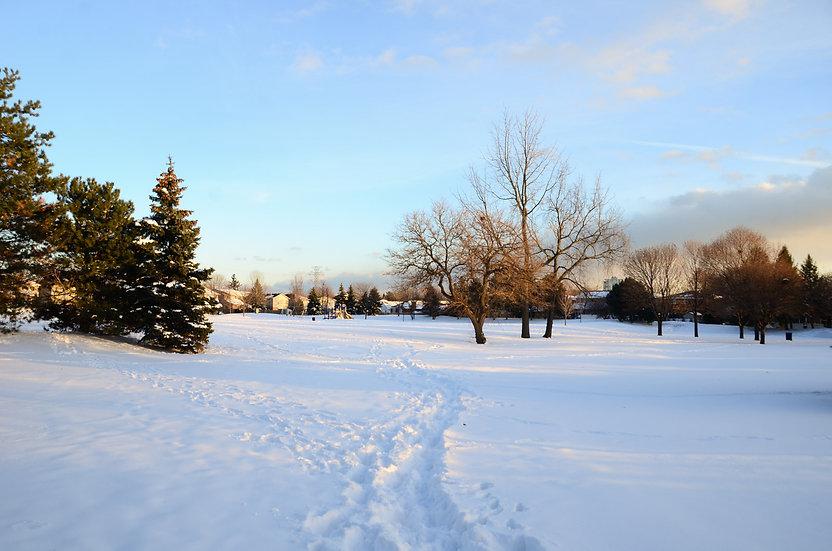 Park Walks