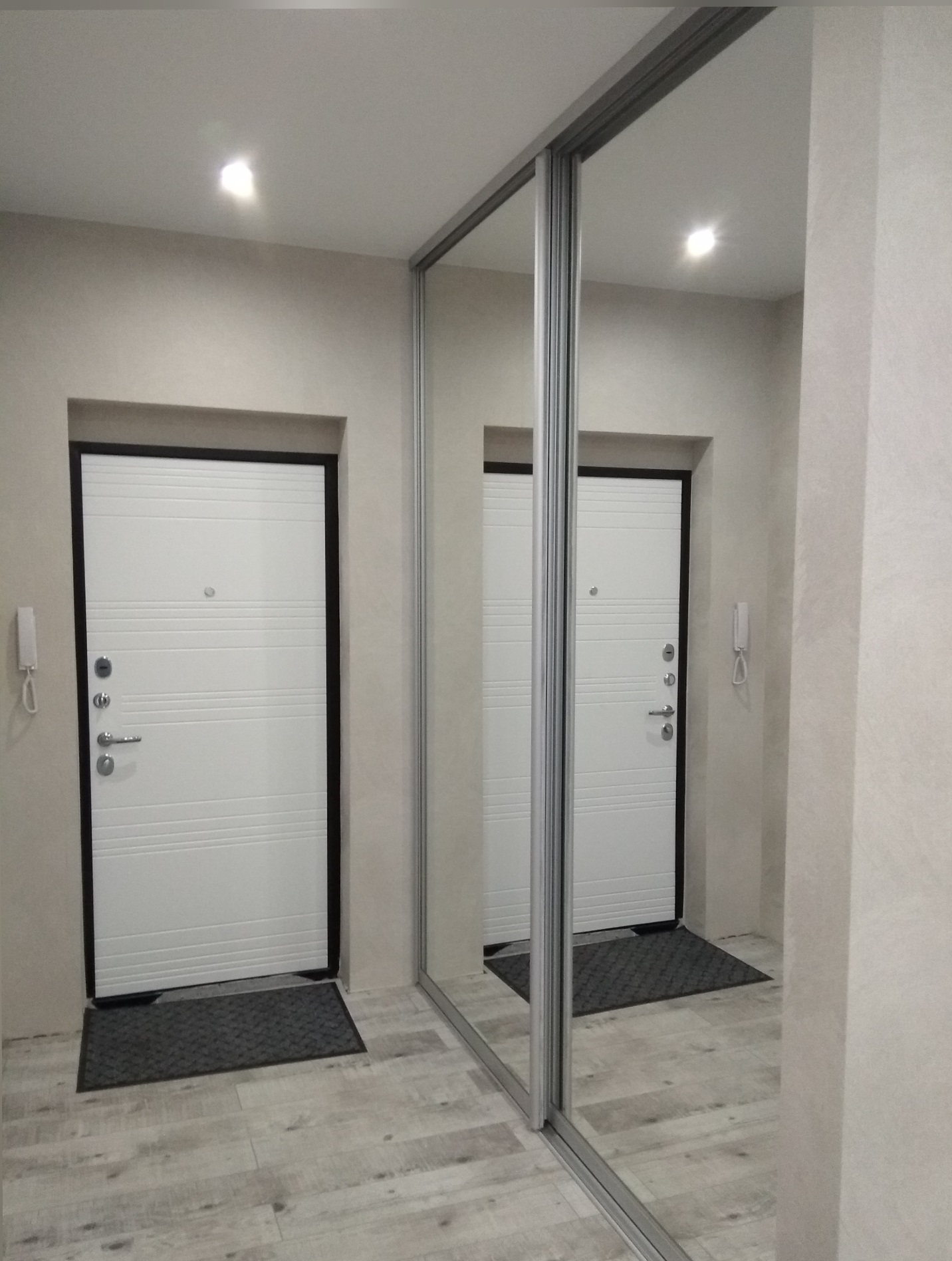 две зеркальных двери