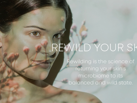 REWILD WITH OUR FESTIVE OFFER