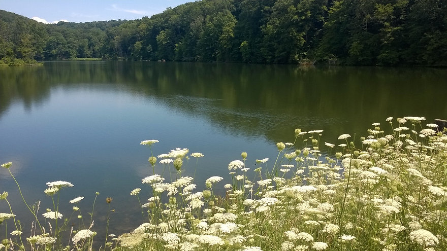 Lovely Lake.jpg