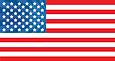 Flag Legit Template.png