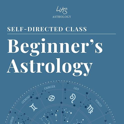 LUTS SCHOOL Beginners Masterclass - Self-directed