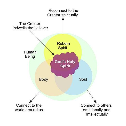Human Being Reborn 2.jpg