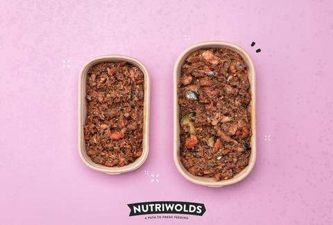 NutriWolds - Salmon Brunch Super Chunky Complete 1kg