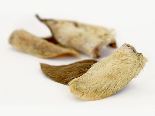 Dried Furry Lamb Ears with Fur x10