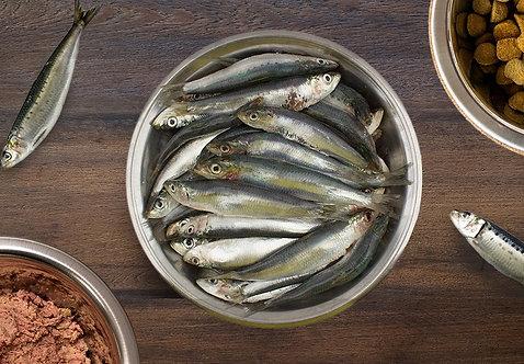 Sardines 1kg (Individually Frozen)