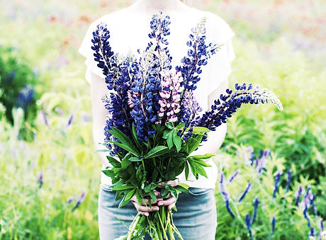 Lupine_Flower_Bouquet_edited.jpg