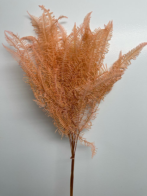 Helecho Fern, Dyed Pink (1 bunch)