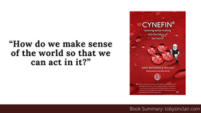 Book Summary: Cynefin by Dave Snowden et al   Learning about Complexity
