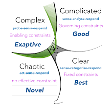 Cynefin applied to COVID-19 crisis - Navigating a crisis with complexity thinking