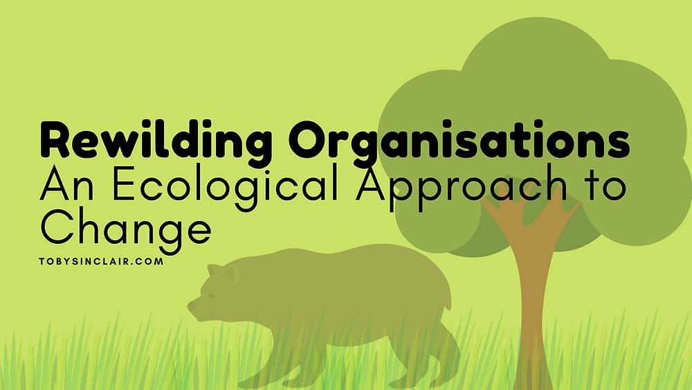 Rewilding Organisations Blog Banner