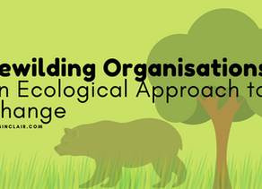 Rewilding Organisations | An Ecological Approach to Change