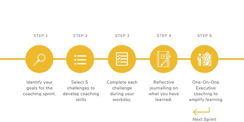 Coaching Flow.png