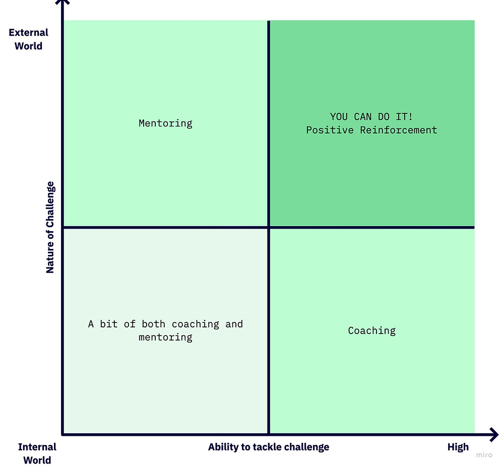 Coaching Mentoring Matrix