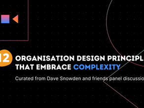 12 Organisational Design Principles that Embrace Complexity
