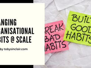 Changing Organisational Habits at Scale | Talk & Workshop