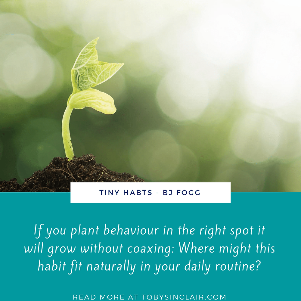 Tiny Habits Quote - If you plant behaviour in the right spot it will grow without coaxing: Where might this habit fit naturally in your daily routine?