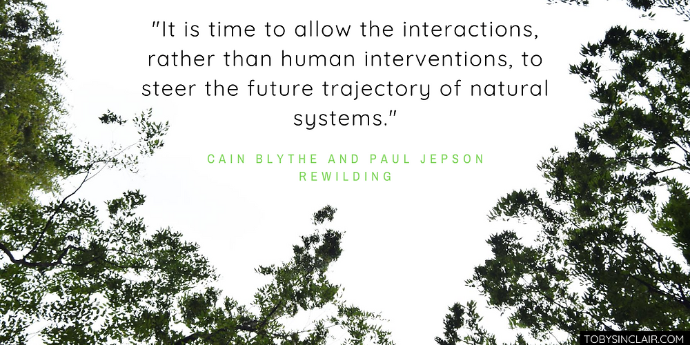 Rewilding by Cain Blythe and Paul Jepson - Interactions