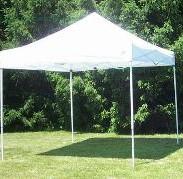 10 x 10 pop up tent $50