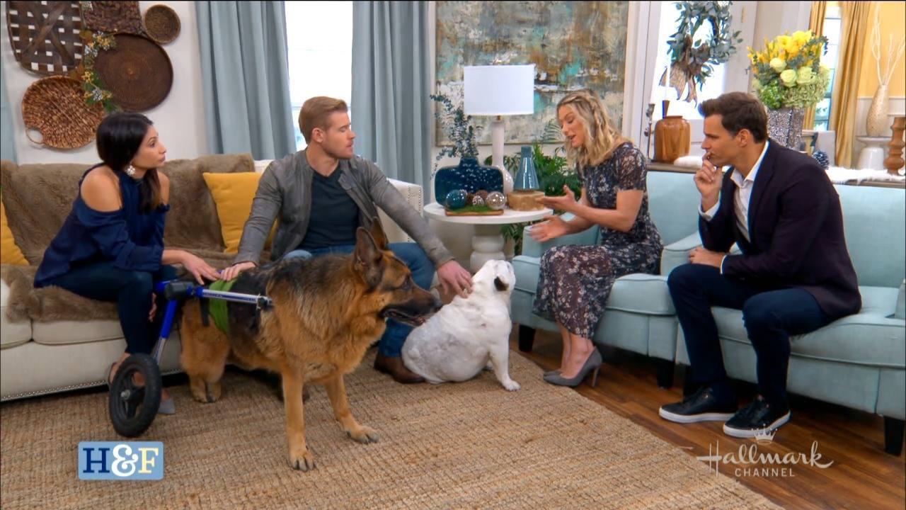 Trevor Donovan with Dogs
