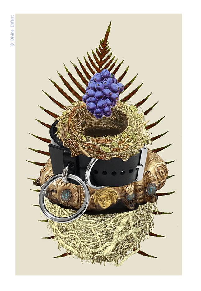 Nest / Nid