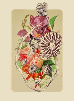 """"""" Bouquet """""""