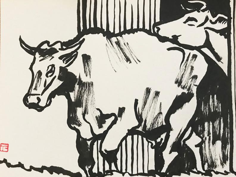 Les vaches de François