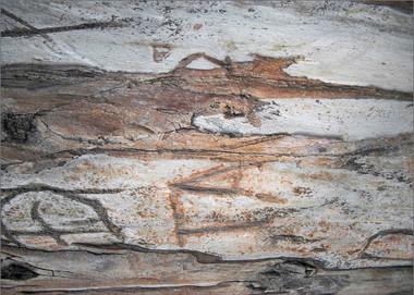'Ancient Script'
