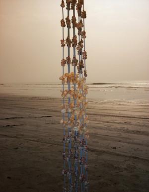 'The Sea Pearls'