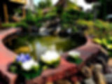 Gallery pic 12.jpg