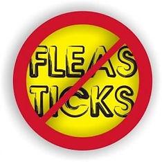 no-fleas rid.jpg