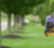 mowing pic.png