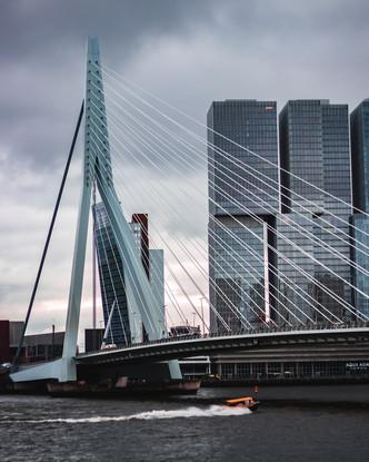 Photo Of Rotterdam During Daytime.jpg