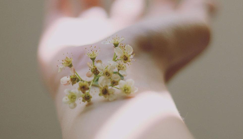dainty flowers web.jpg