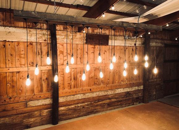 Rustic Edison Bulb Backdrop