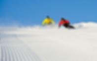 iridium skis 11.png