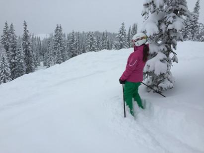 2015 WSIA SUMMIT IN THE SNOW RECAP.