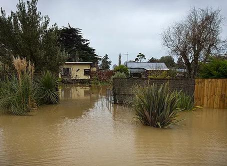 Waitati In Flood