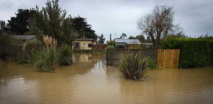 Waitati in flood | Waterwatch.io