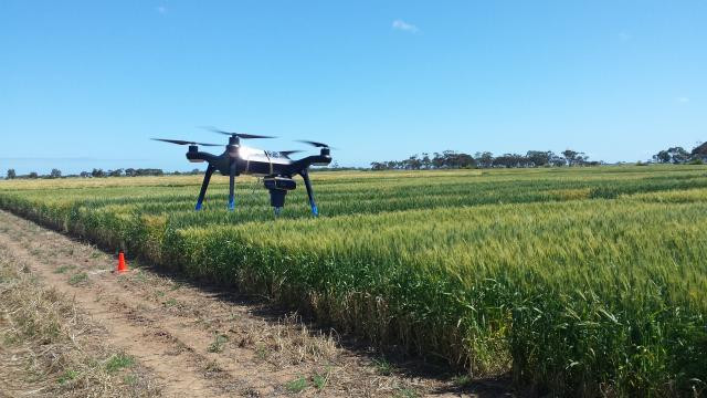 Drone Agtech IoT