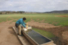 ls1 water trough installation